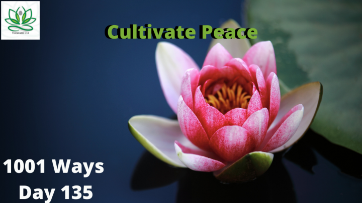 Cultivate Peace - 1001 Ways - Day 136