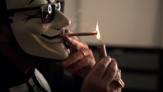 Mister Weed -