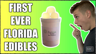 TRYING FLORIDA'S FIRST EVER EDIBLES (FL MMJ)(Edible Journal)