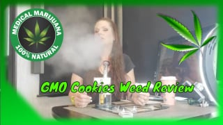 GMO Cookies Weed Review From @AerizAeroponicCannabis