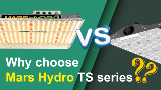 Why Choose Mars Hydro TS1000 TS2000 TS3000 LED Grow Lights?