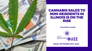 CANNABIS SALES TO NON RESIDENTS IN ILLINOIS IS ON THE RISE | TRICHOMES Morning Buzz