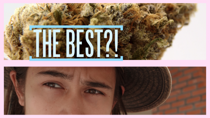 BEST WEED IN THE WORLD?! - (California, Amsterdam, Denver or Jamaica?)