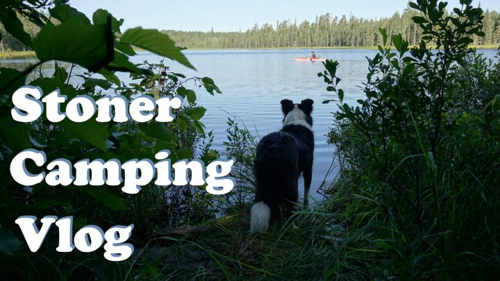 STONER CAMPING VLOG - Part2 | Fishing With Seabass | Nature Sesh on Crown Land