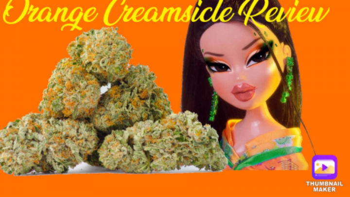 Orange Creamsicle Review