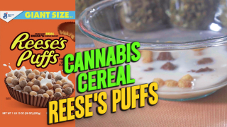 How to make Cannabis Reese's Puffs Cereal | THC Cereal from scratch