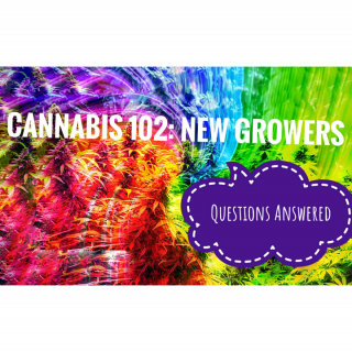 New Growers Questions Part 1