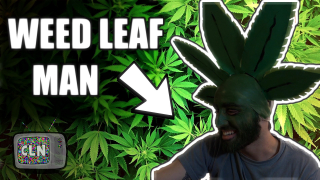 BECOMING A WEED LEAF FOR HALLOWEEN! (Edible Journal)