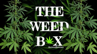The Weed Box October 2020 Mystery Box Unboxing and Review