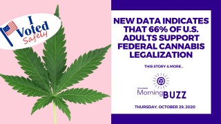 DATA REVEALS THAT 66% OF US ADULTS SUPPORT FEDERAL CANNABIS LEGALIZATION | TRICHOMES Morning Buzz