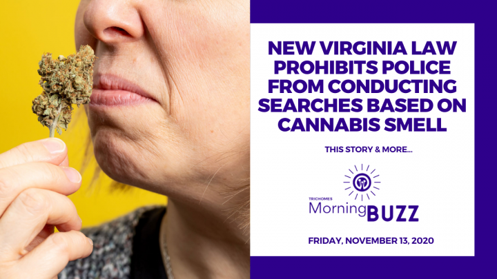 NEW VIRGINIA LAW PROHIBITS POLICE SEARCHES BASED ON CANNABIS SMELL | TRICHOMES Morning Buzz