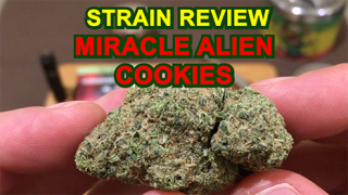 Miracle Alien Cookies From AC Medical - Strain Review