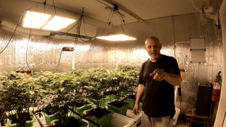 My OMMA Commercial Grower License Has Been Approved!