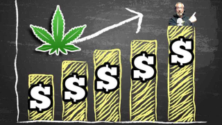 Getting The Best ROI In New Cannabis Markets