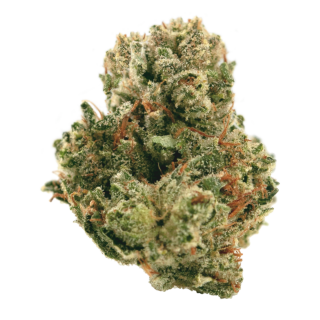 Da Kitchen Couch Reviews - Sugar Cookie from BC Bud Supply