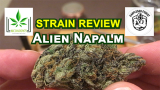 Alien Napalm From Karplusan Forest - Strain Review