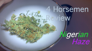 NJ Medical Dispensary Strain Review: Nigerian Haze (Garden State Dispensary, Union NJ)