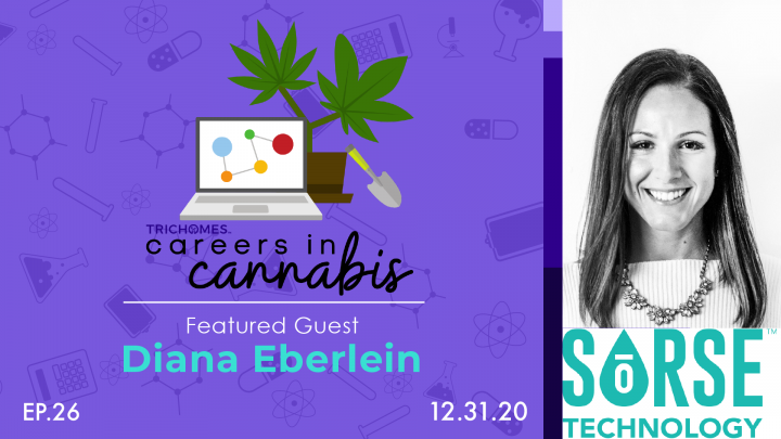 Keeping Up with the Ever-Changing Cannabis Dynamic - Careers in Cannabis w/ Diana Eberlein of SoRSE