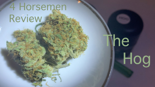 NJ Medical Dispensary Strain Review: The Hog (Garden State Dispensary, Union NJ)