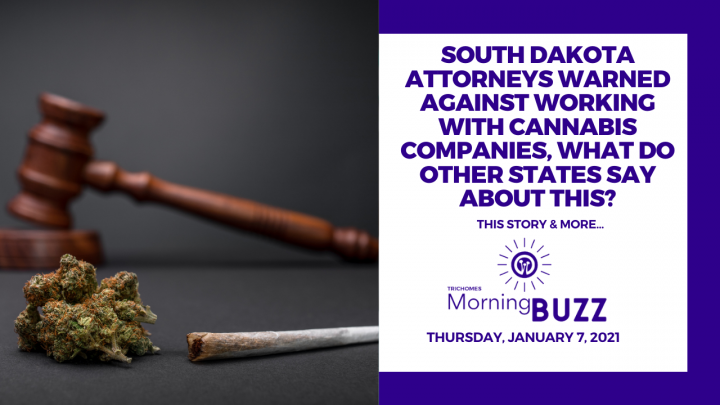 SD Attorneys Warned Against Working w/ Cannabis Companies, What Do Other States Say About This?