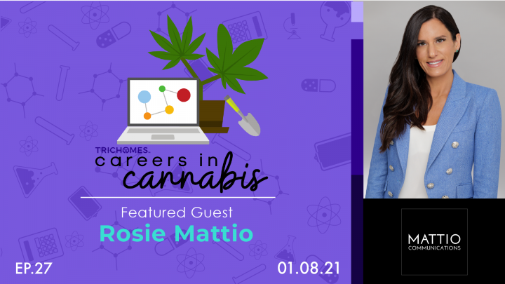 Investing in Relationships within Cannabis & Beyond - Careers in Cannabis w/ Rosie Mattio