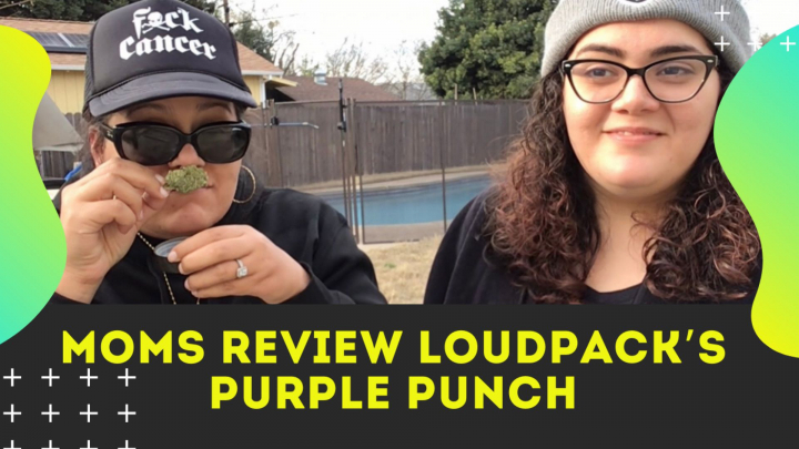 Mom's Review Loudpack's Purple Punch