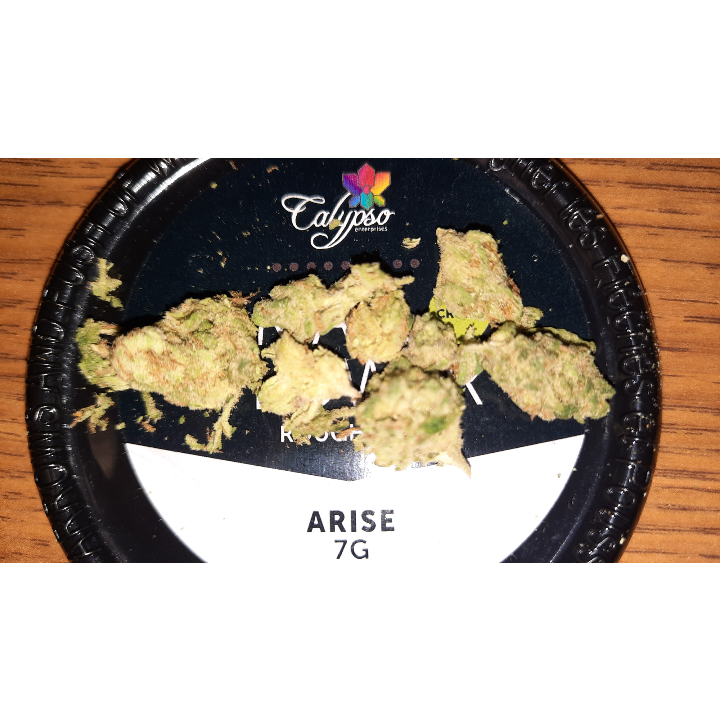 ARISE BY CALYPSO STRAIN REVIEW BY PA BUD