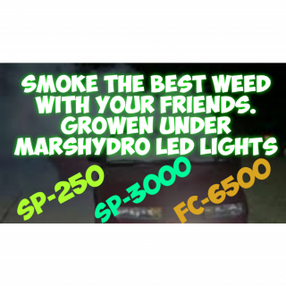 Mr Foxx NEW GROW LED'S IN THE GROWROOM