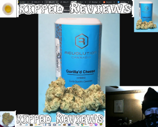 Gorrila'd Cheese Flower by Revolution Cannabis - Review