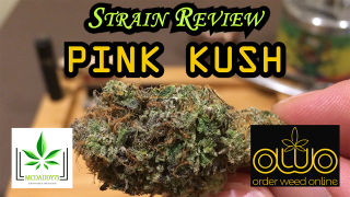 Pink Kush from Order Weed Online - Strain Review