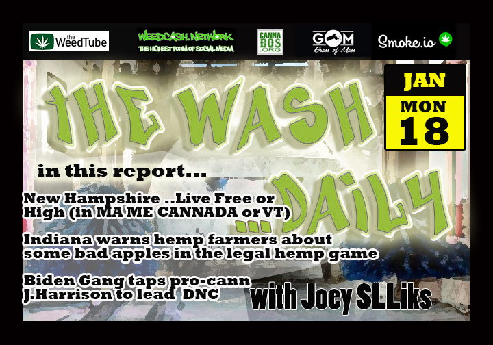 THE WASH DAILY with Joey SLLiks CANNABIS NEWS REPORT New Hampshire is so free, they can't have weed.