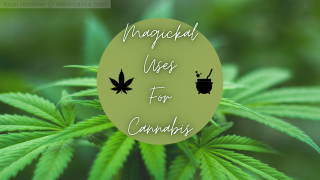 ✨ | MAGICKAL USES FOR CANNABIS / LOVE RITUAL | ✨