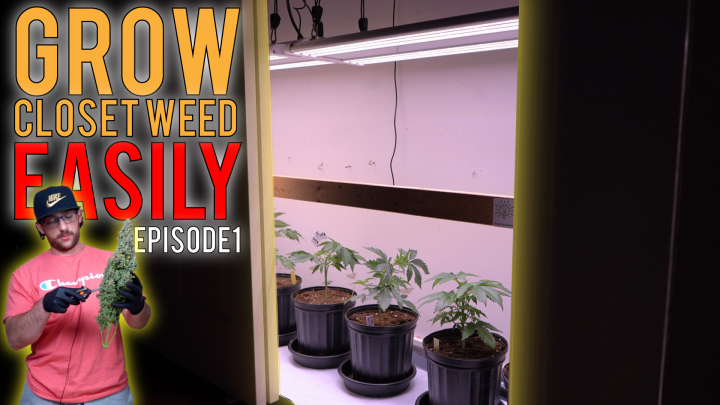 GROWING WEED IN A CLOSET (PHOTOPERIODS) GUIDE TO SIMPLE GARDENING. EP1