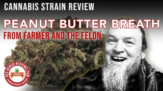 Farmer And The Felon | Peanut Butter Breath Strain Review | 23.86% THC!