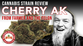 Farmer And The Felon | Cherry AK Strain Review | 23.89% THC!