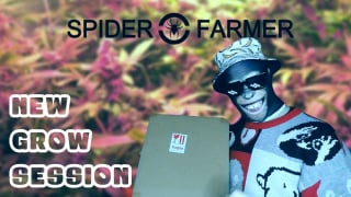 Starting a new grow, kindly sponsored by Spider Farmer!