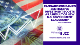 Cannabis Companies See Investment Boosts as Result of New U.S. Leadership | TRICHOMES Morning Buzz
