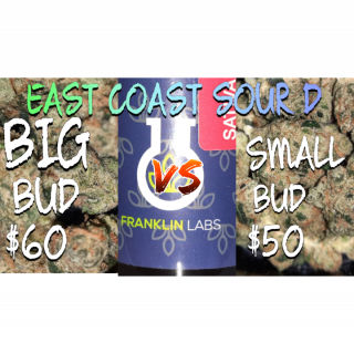 MUST WATCH ! before your next dispensary visit. EAST COAST SOUR D BIG BUD VS SMALL BUD