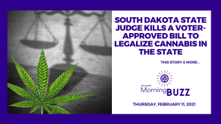 South Dakota Judge Kills Voter-Approved Bill to Legalize Cannabis | TRICHOMES Morning Buzz