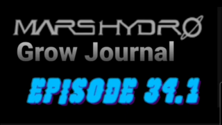 MarsHydro Grow Journal  #SP-250 #FC6500 RDWC Veg Tent & Seedlings  #MARSHYDROSP6500  Episode 34.1