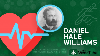 HISTORY HIGH X THE WEEDTUBE COLLAB | MOMENTS IN BLACK HISTORY | DR. DANIEL HALE WILLIAMS